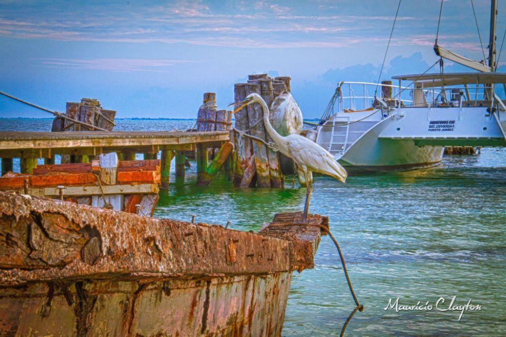Photo in HDRI #hdr #crane #rustyboat