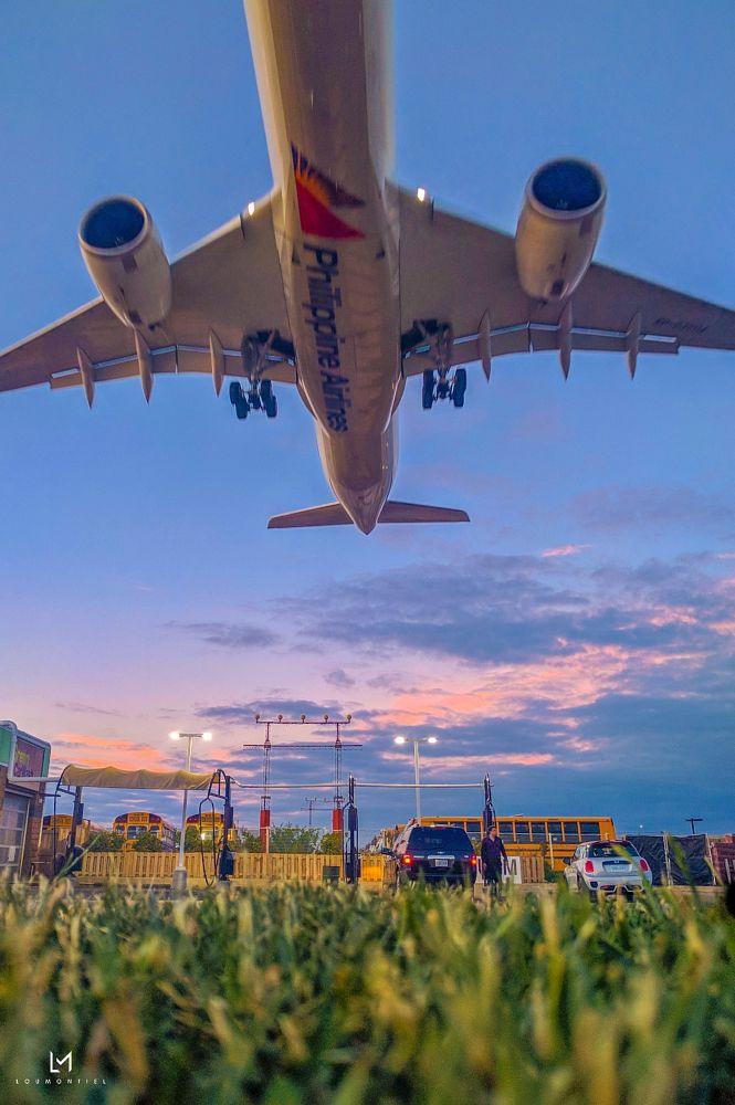 Photo in Street Photography #airport #airplane #landing #sunset #torontopearsonairport #toronto #canada