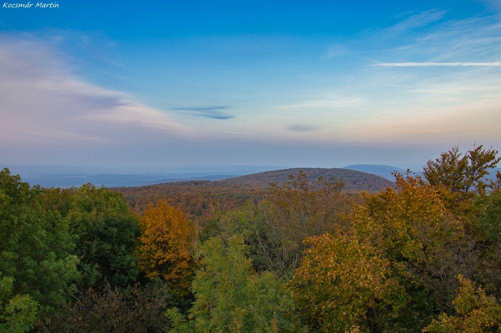 Photo in Nature #travel #trip #forest #erdő #kirándulás #autumn #ősz #fall #trees #fák #woods #orange #narancs #zöld #green #nature #természet #hungary #magyarország #sky #égbolt #beautiful #gyönyörű #calmness