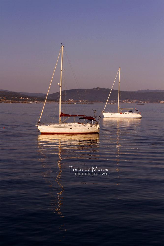 Photo in Travel #ría #sea #sail #velero