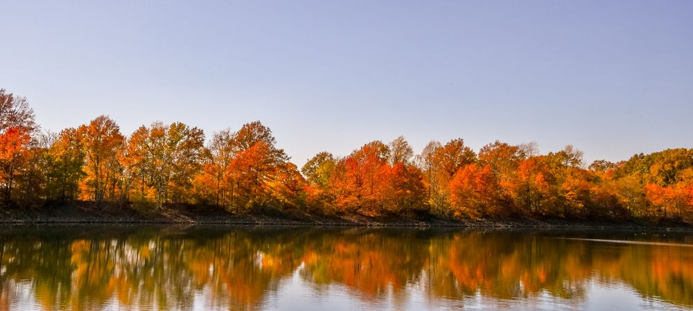 Photo in Landscape #trees #autumn #fall #lake #reflection
