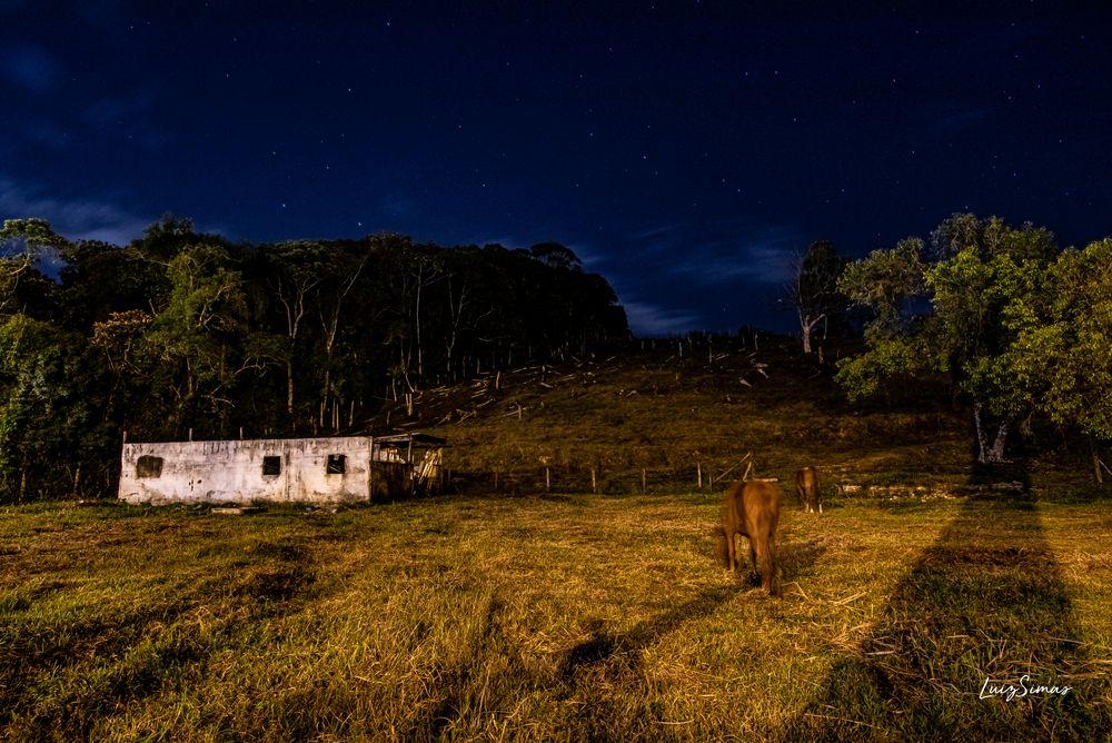 Photo in Random #céu #natureza #longaexposição #cavalos
