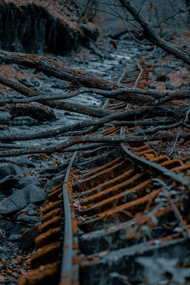 Photo in Landscape #nature #landscape #winter #rail