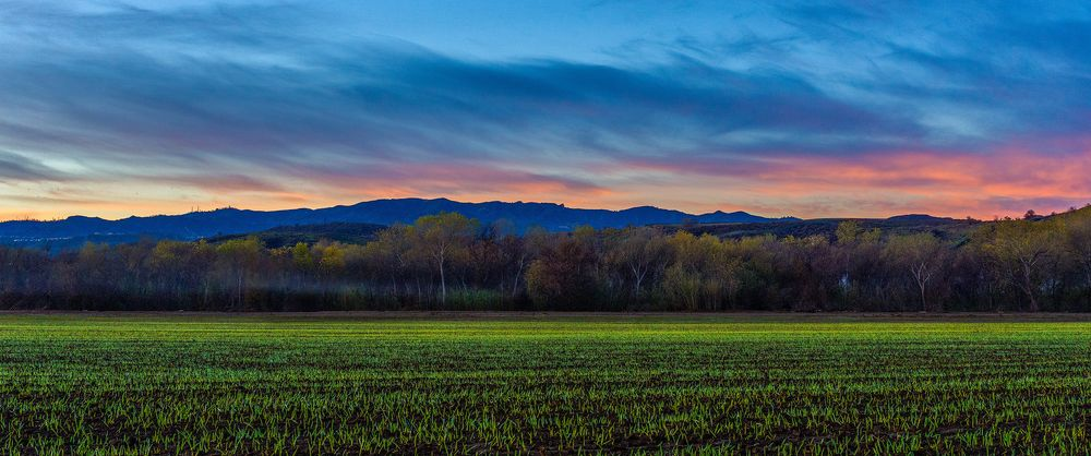 Photo in Landscape #valencia #california #sunrise #field #valley #clouds #morning #twilight