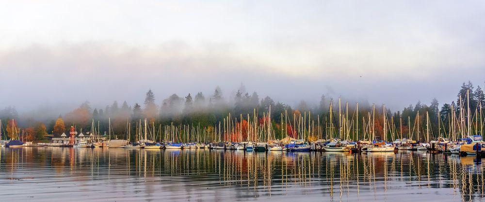 Photo in Landscape #water #vancouver #canada #british columbia #boats #sailing #marina