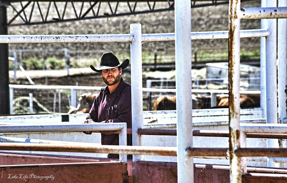 Photo in People #ranch #cowboy #portrait