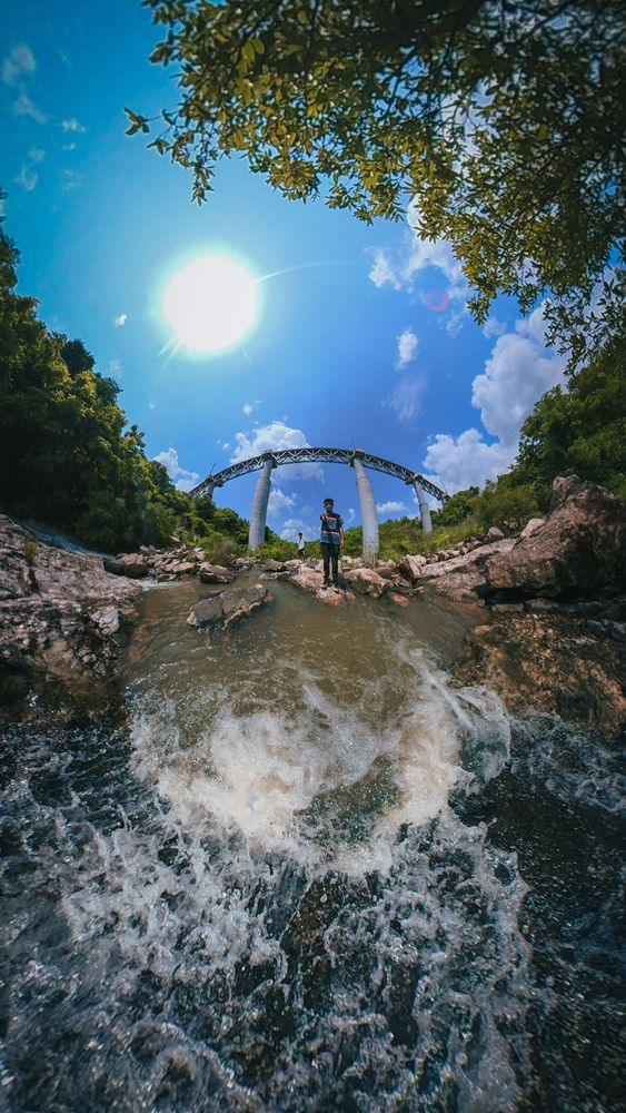 Photo in Nature #bridge