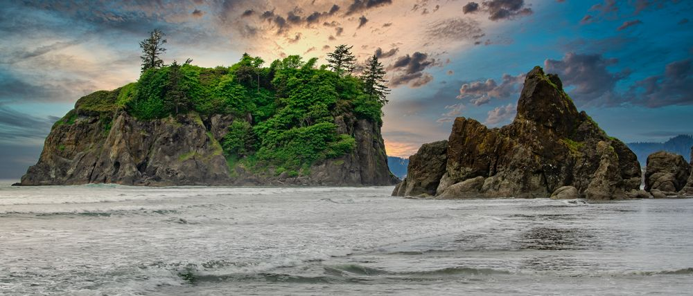Photo in Landscape #olympic national park