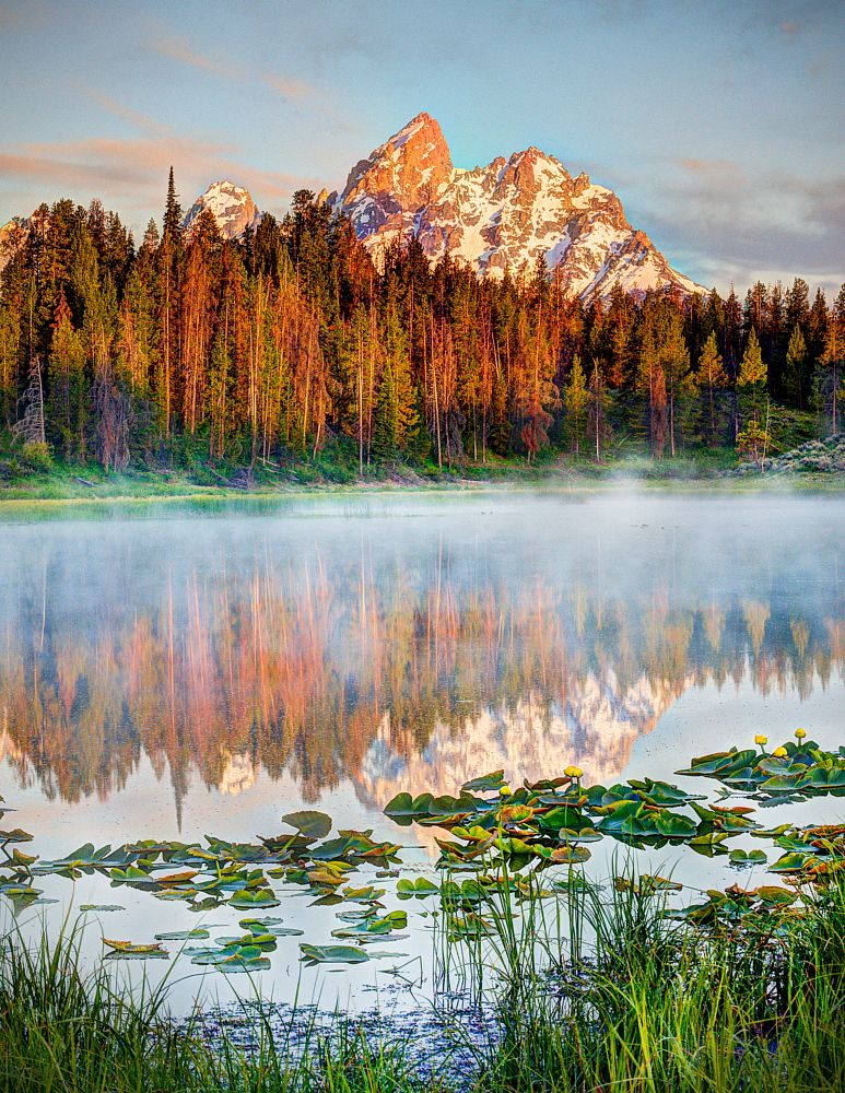 Photo in Landscape #mountain #mist #water #trees #reflection #water lilies #grass