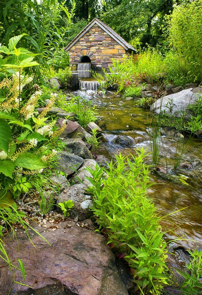 Photo in Landscape #flower #preserve #water #serene