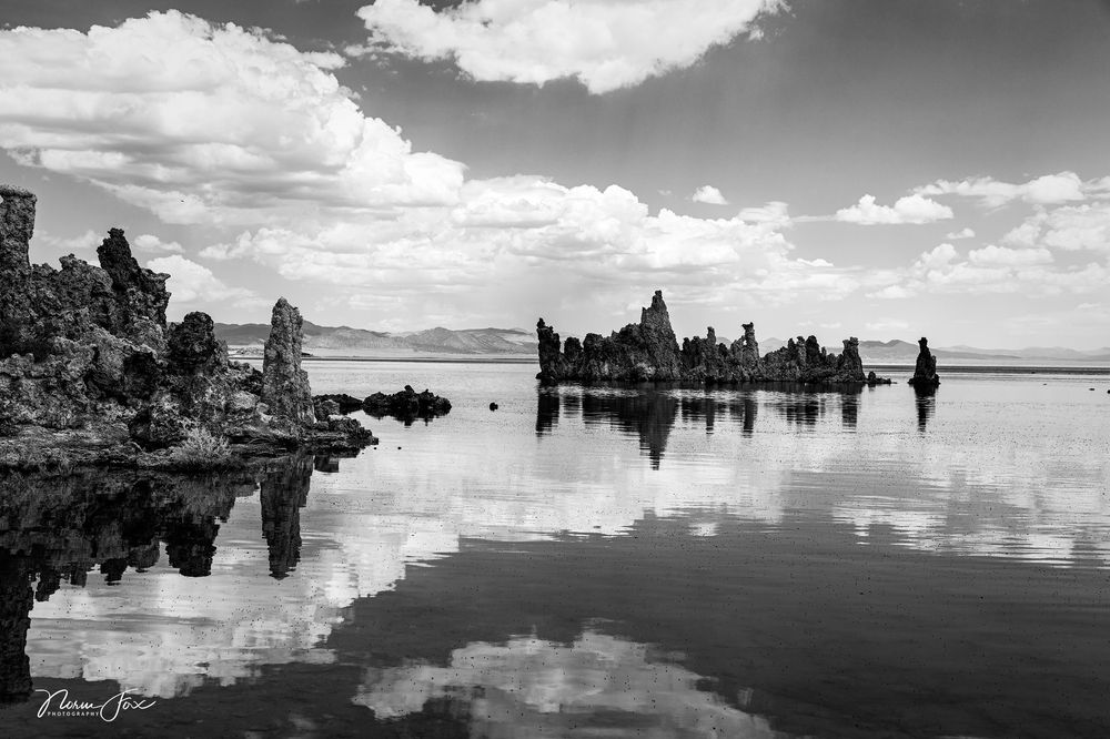 Photo in Black and White #america #art #artistic #b&w #bnw #backcountry #black #black and white #black and white artistry #blackandwhite #california #digart #digital fine art #digital photography #fine art #fine art photography #hiking #mono art #mono lake #mono lake state park #monochromatic #monochrome #mountains #norm fox photography #outdoor #outdoors #park #photography #photography art #scenic #serene #sky #travel #us 395 #usa #united states #hike #normfox.smugmug.com