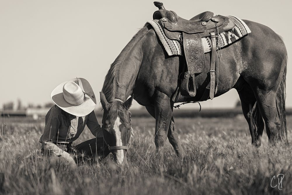 Photo in People #cowgirl #western #ranch #ranch life #horse #woman #female #outdoors #saddle #cowboy hat #cdphotog