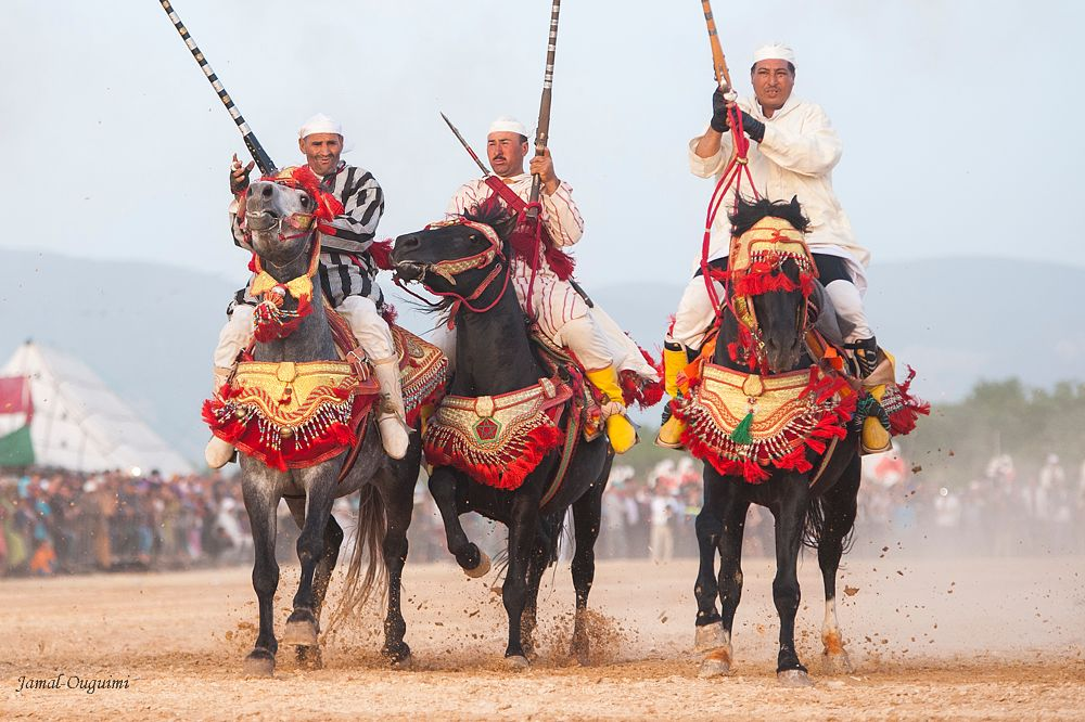 Photo in Sports #horse #rider #competition #morocco #azilal #tbourida