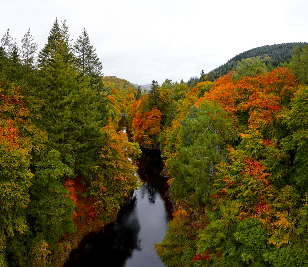 Photo in Landscape #landscapes #autumn #trees #dramatic #colouful #scottish highlands #river #reflections #beauty in nature #nature
