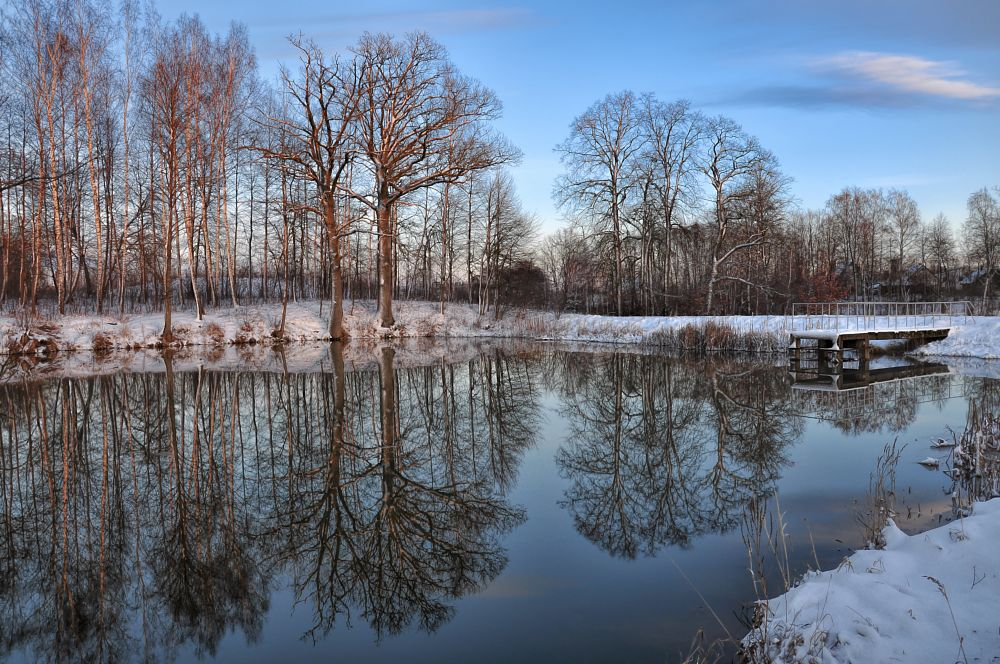 Photo in Landscape #pond #water #trees #reflection #evening #sunset