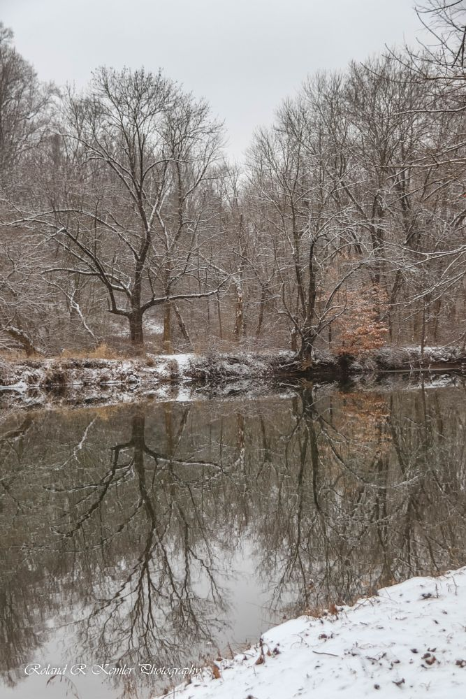 Photo in Random #reflections #trees #water #snow #portrait