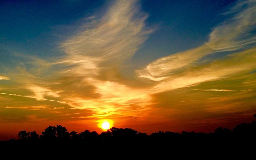 Photo in Nature #sunrise #nature #travel #tenenessee #contrastcontest