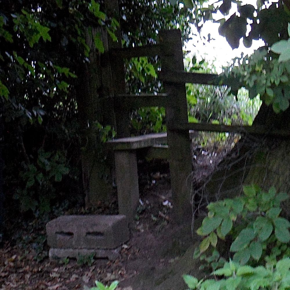 Photo in Nature #stile #path #walk #cheshire
