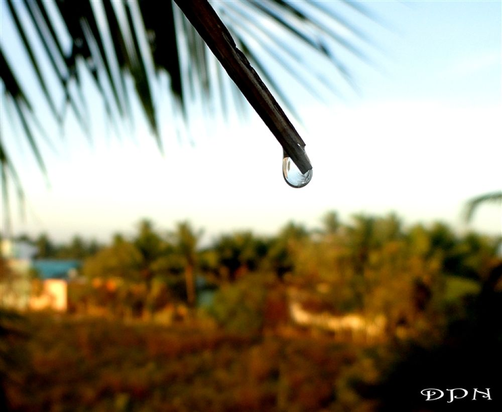 Photo in Random #drop #is #every #special