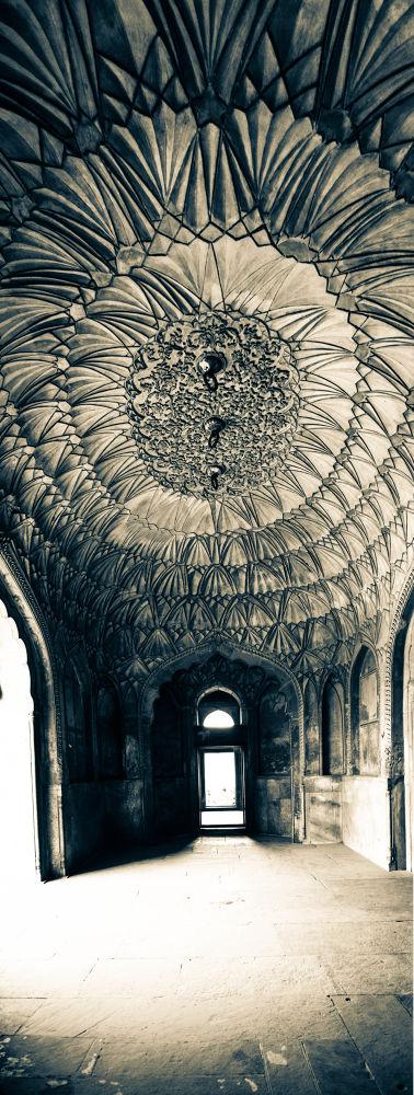 Photo in Architecture #heritage #safdarjang #tomb #copper #royal