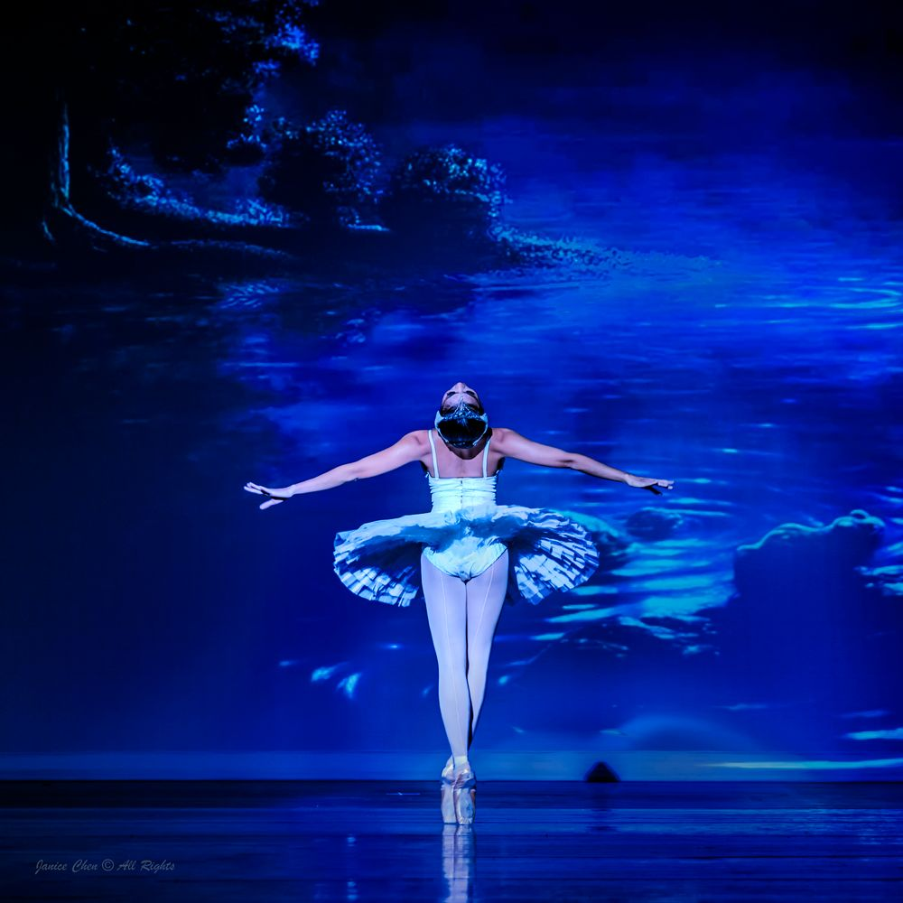 Photo in Concert #ballet #performance #ipaa #swan #dying swan