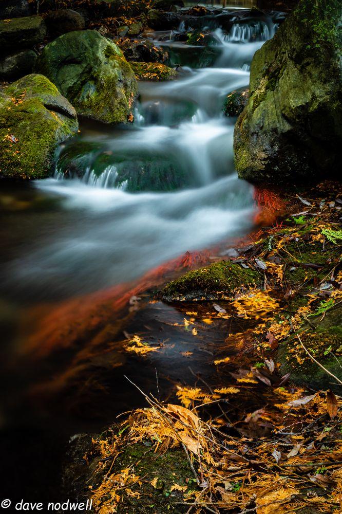 Photo in Landscape #creek #water #fall