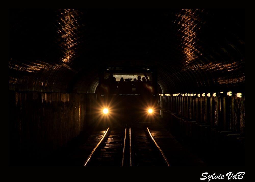 Photo in Random #on #light's