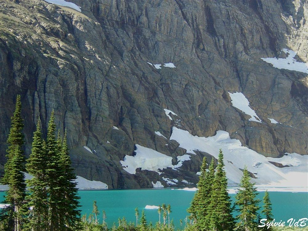 Photo in Random #glacier #np