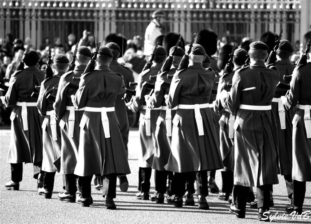 Photo in Random #the #changing #guards