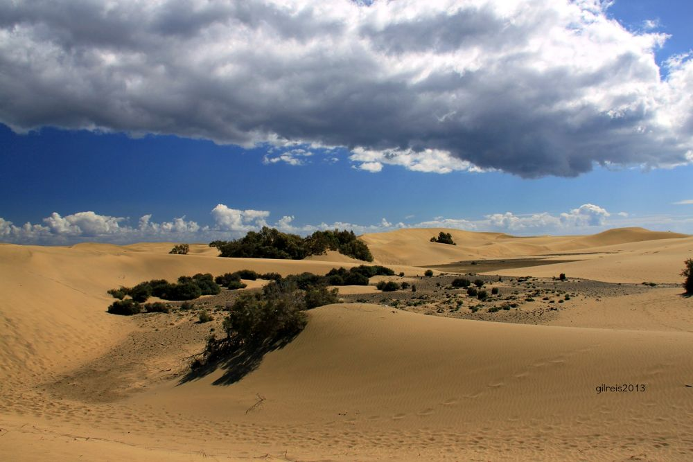 Photo in Nature #maspalomas #nature #sands #sky #clouds