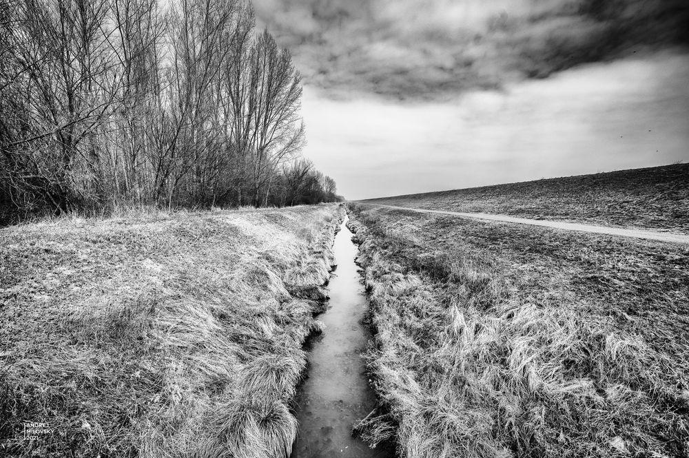Photo in Black and White #landscape #stream #perspective #trees #sky #clouds #symmetry #b&w #slovakia #andrej milovsky