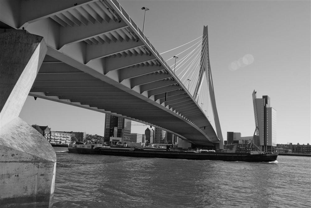 Photo in Random #bridge #erasmus #free2rec