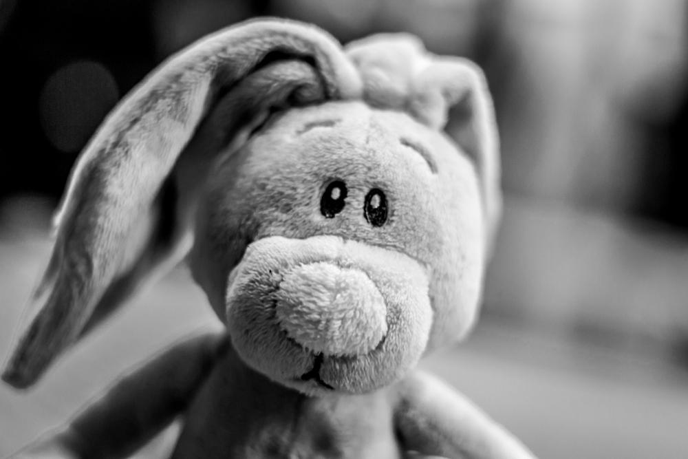 Photo in Random #rabbit #toy #portrait #childhod #story #smile