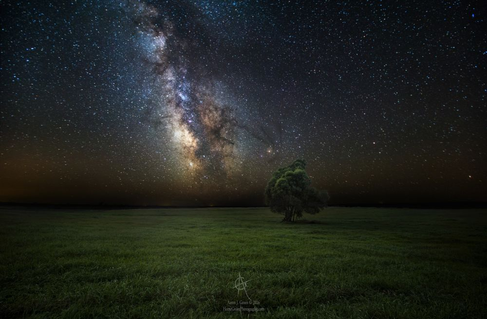 Photo in Astrophotography #tree #astrophotography #milky #way #stars #night #lone #alone #missing #you #forever #goodbye #astro #astronomy #galactic #center #light #galaxy #cosmos #universe #planets #astroscape #nature #rural #south #dakota #aaron #groen #homegroen #photography #dedicated #to #the #memory #of #a #c #lost #sad #top #best