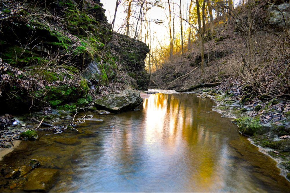 Photo in Landscape #sunset #stream #water #arkansas #camera #dslr