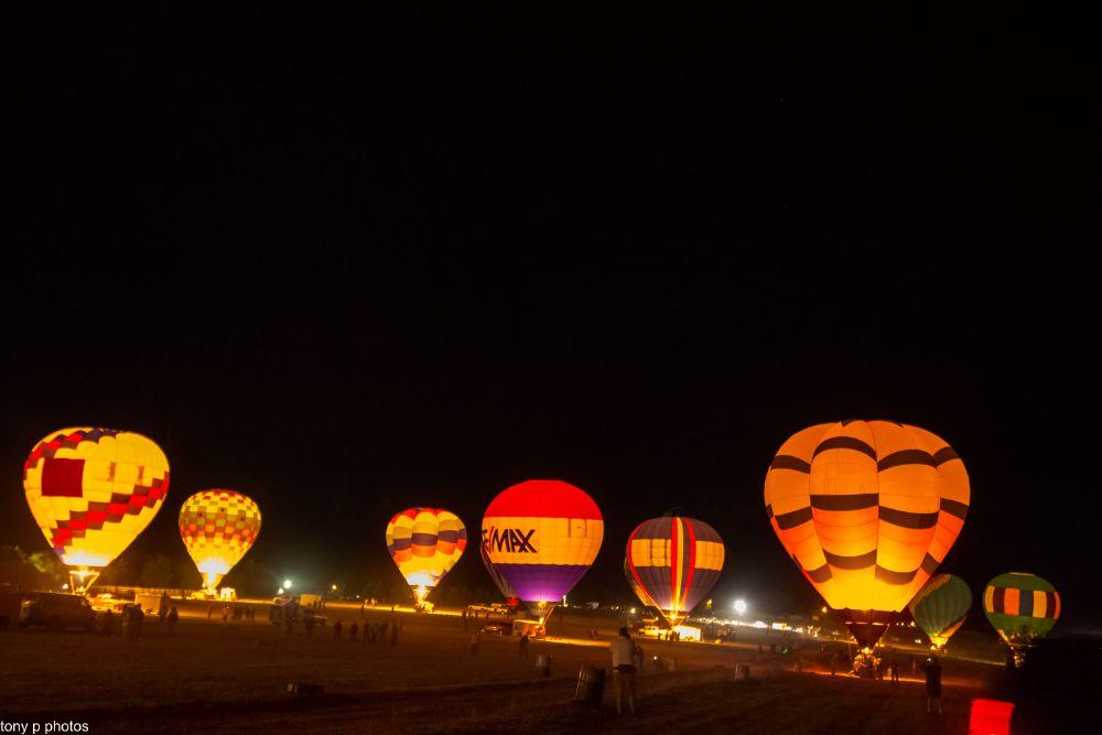 Photo in Random #tony p photos #great reno balloon race #nikon #balloons