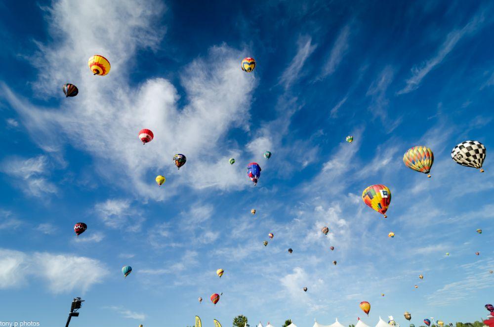Photo in Random #tony p photos #great reno balloon race #balloons #fall