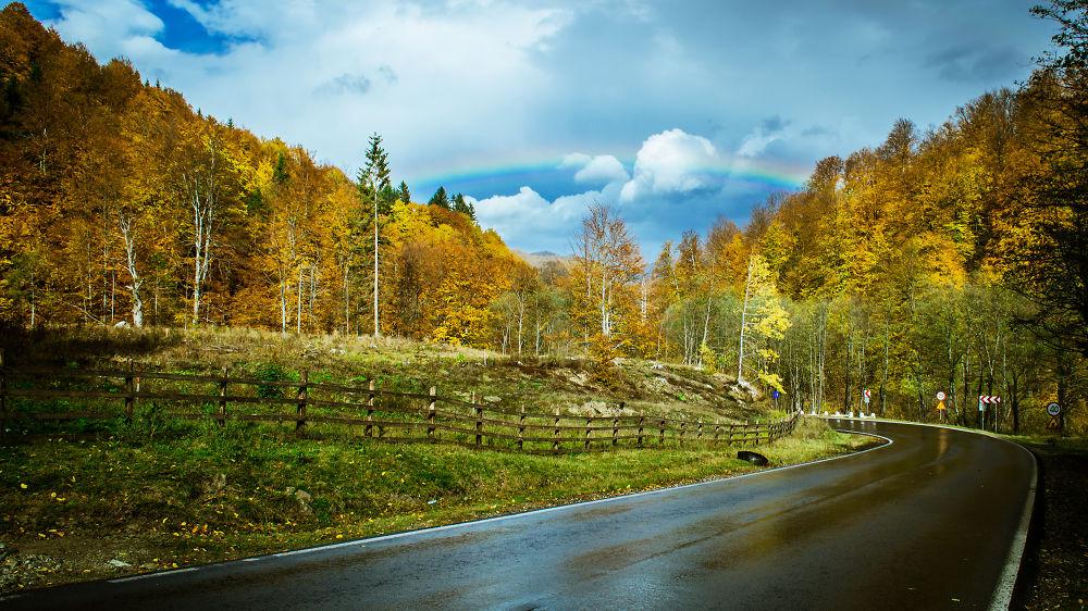 Photo in Landscape #d7000 #road #raindow