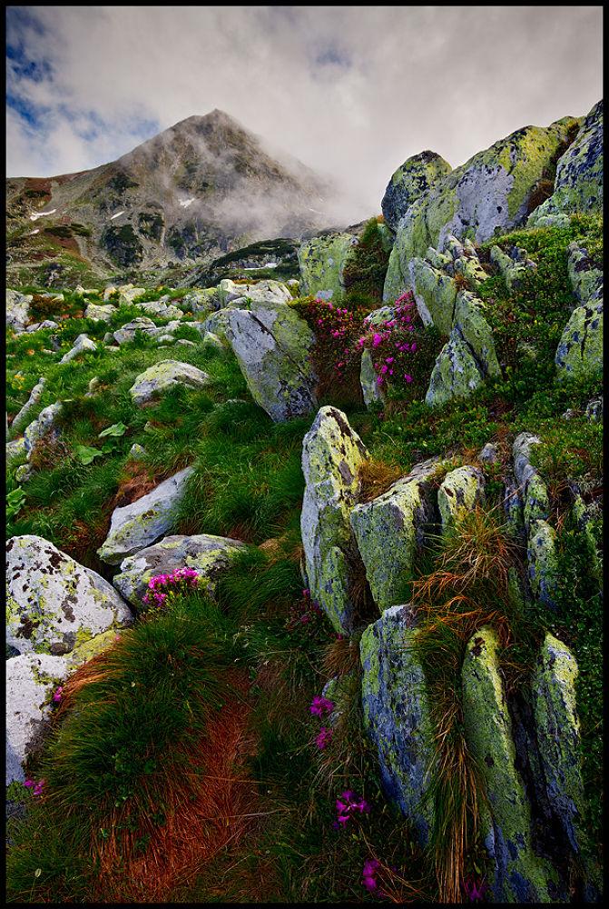 Photo in Landscape #mountains #nature #landscape #stones #clouds #sunrise #romania #retezat