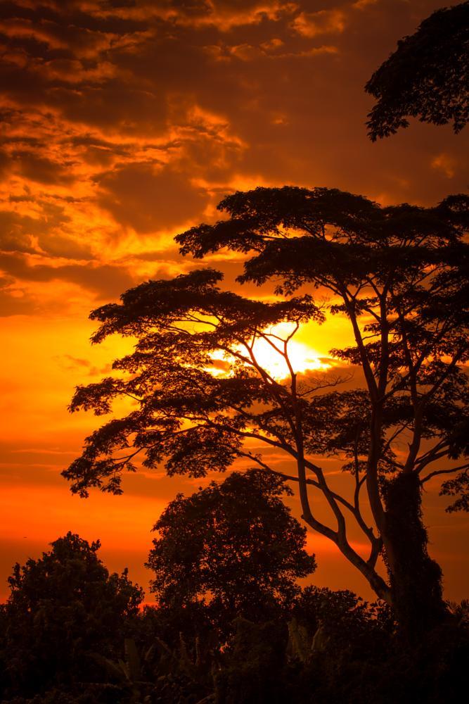 Photo in Landscape #sunset #sundown #nature