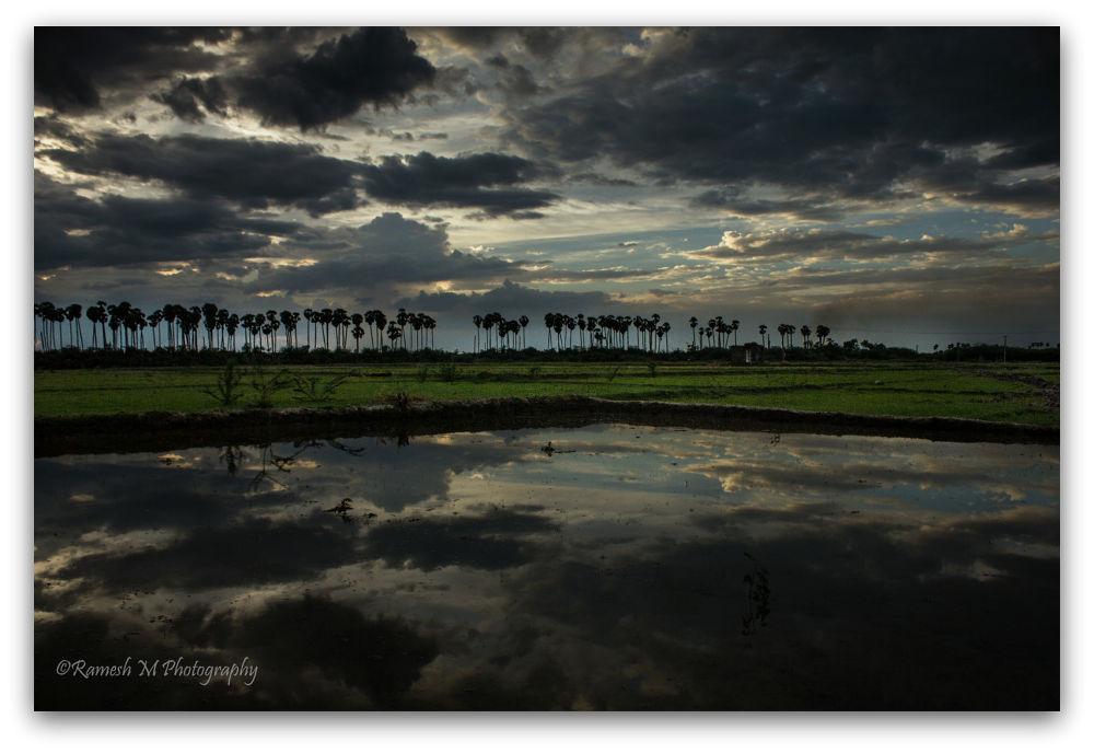 Photo in Landscape #vilupuram #nature #landscape photography #parikal village #vilupuram district #tamil nadu #cultivation land #farmland #indian photography