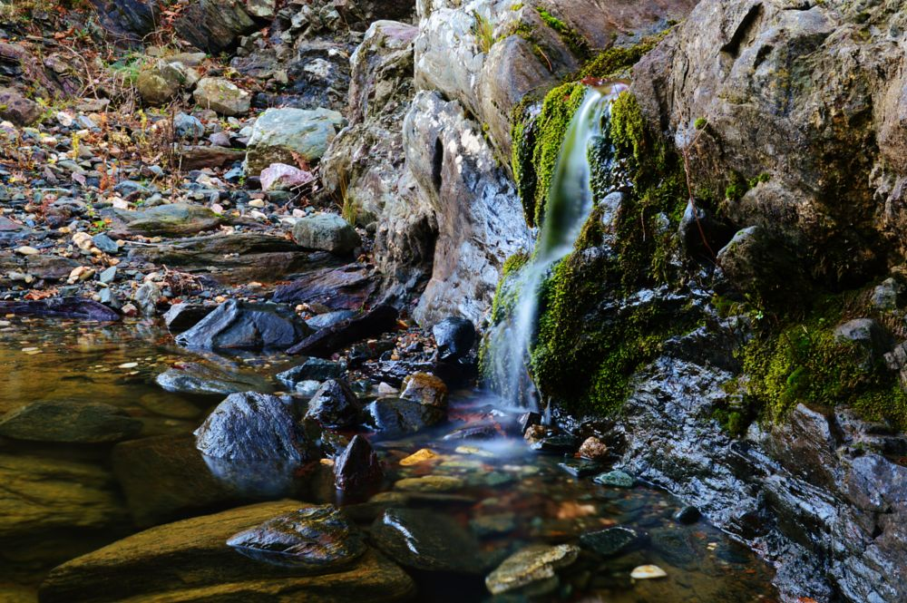 Photo in Nature #nature #waterfall #flow #brooklet