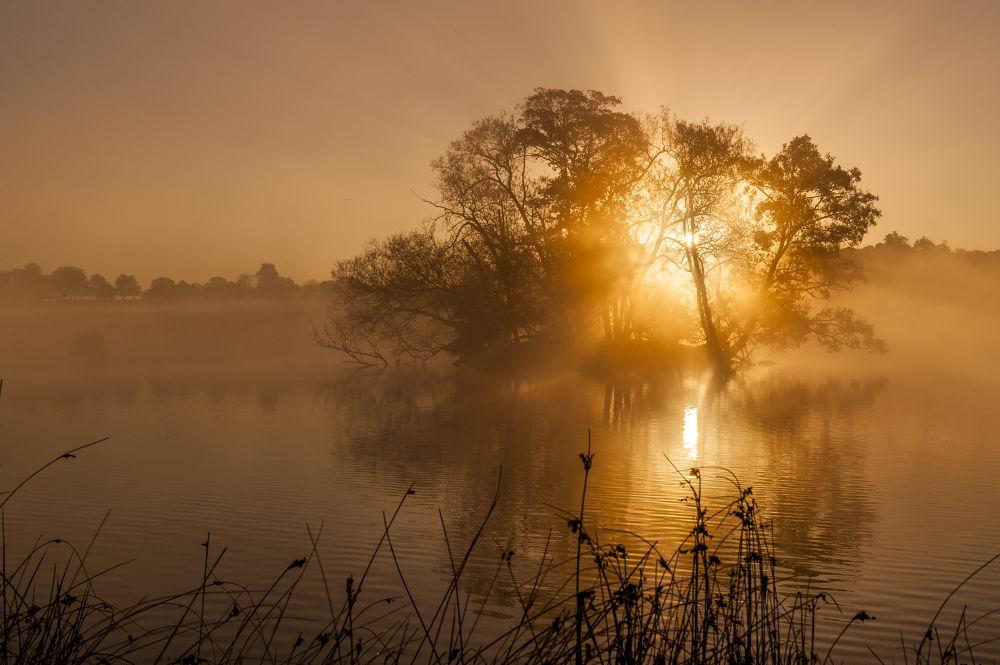 Photo in Random #sunrise #morning #dawn #richmond #first light #sun