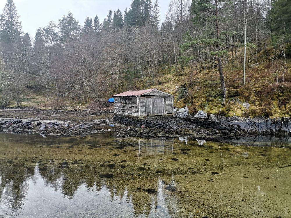 Photo in Landscape #sea #old boathouse #trees #reflections #kvamsvågen #alver kommune