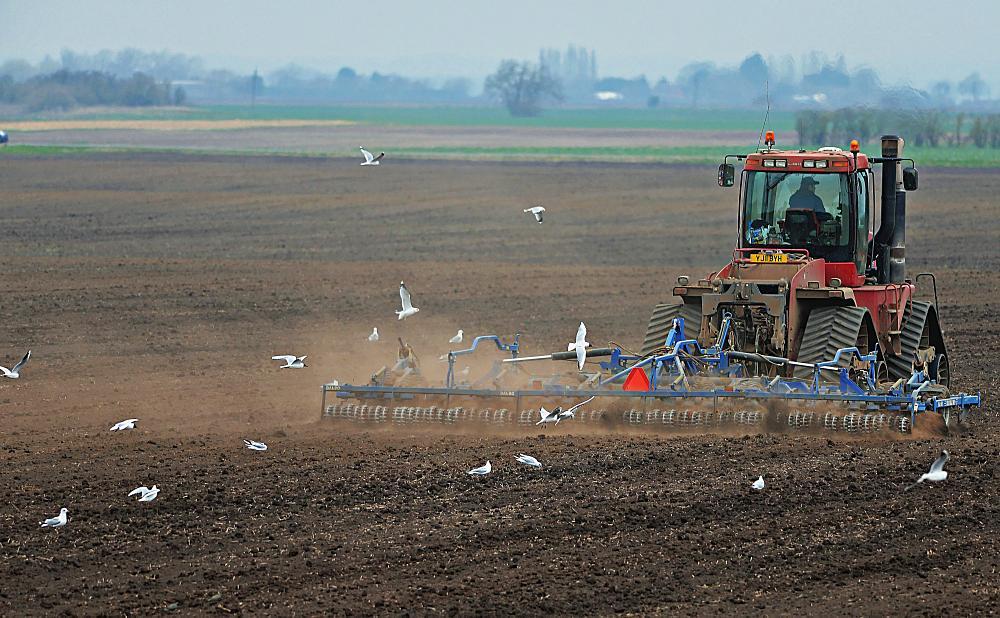 Photo in Landscape #tractor #terns #fields