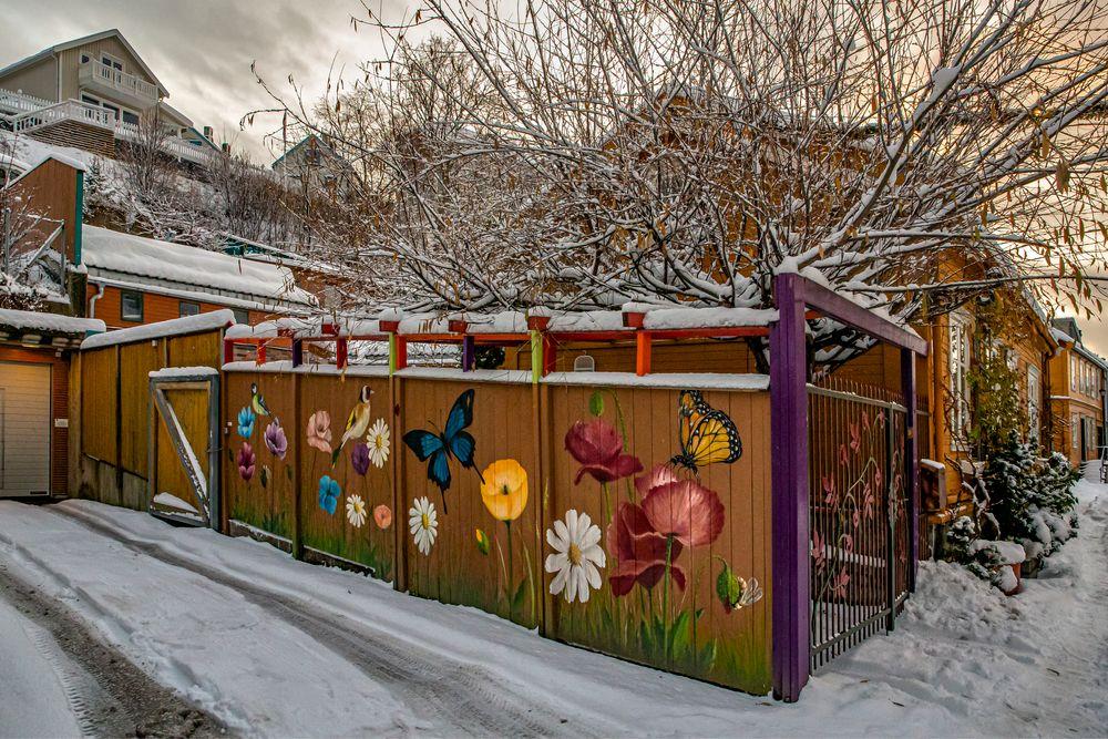 Photo in Travel #foto w@ng #winter #vinter #snow #snø #streetart #nedre bakklandet #bakklandet #trondheim #trøndelag #norway #norge #odd rune wang