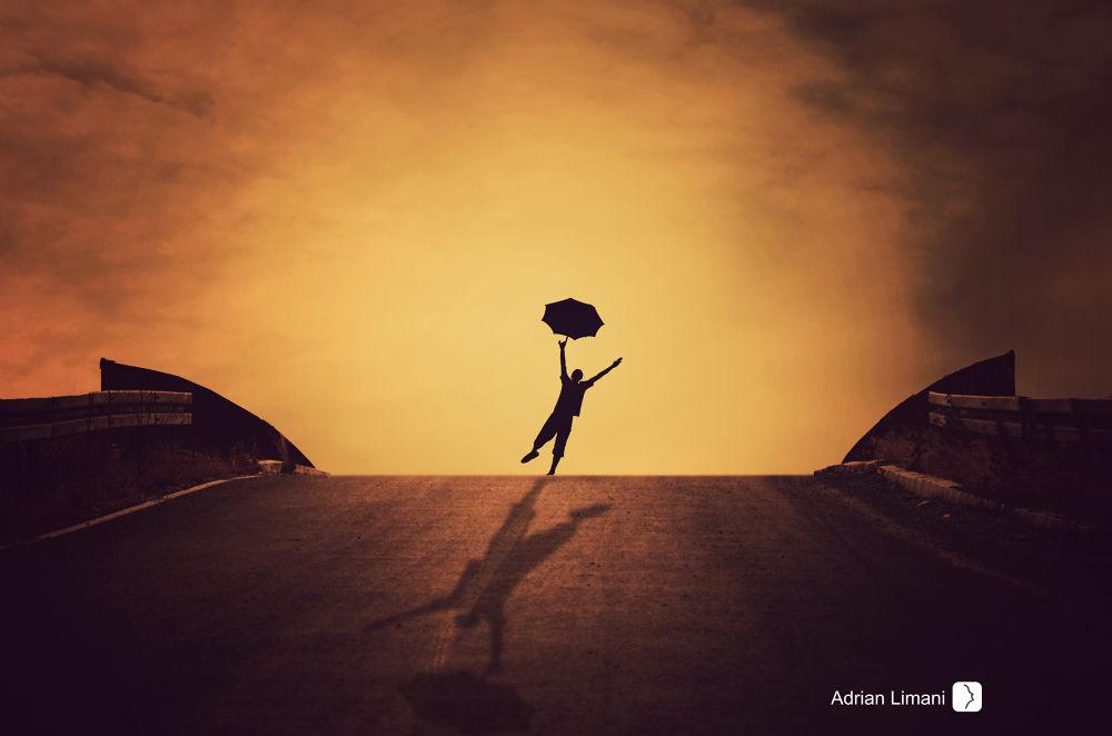 Photo in Fine Art #fly #night #silhouette #bridge #fineart #creative #conceptual