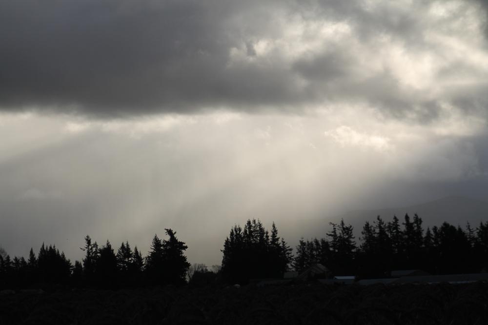 Photo in Landscape #weather #sunlight #landscape