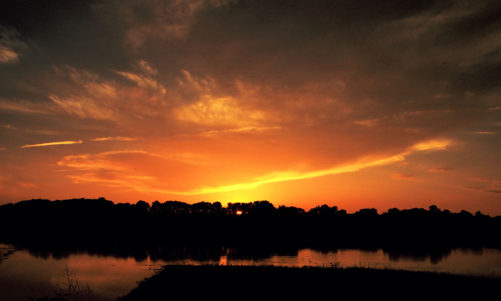 Photo in Landscape #marsh #sunset #clouds #trees #haaland