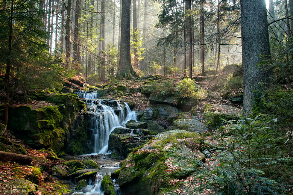 Photo in Landscape #waterfall #morning #sunrays #landscape #forest #nature #creek #kirsten karius #trees #fairytale